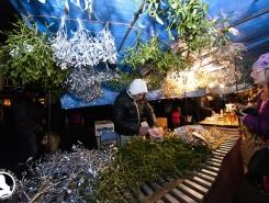 Rozsvícení vánočního stromku na Staromáku (11)